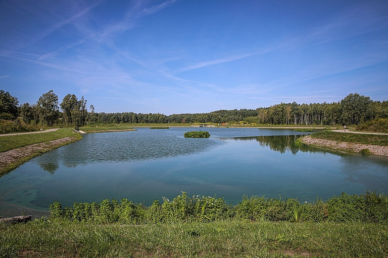 Zbiornik retencyjny Jasień (Potok Strzyża)